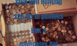 Coin Roll Hunting $25 in Pennies – Box 4